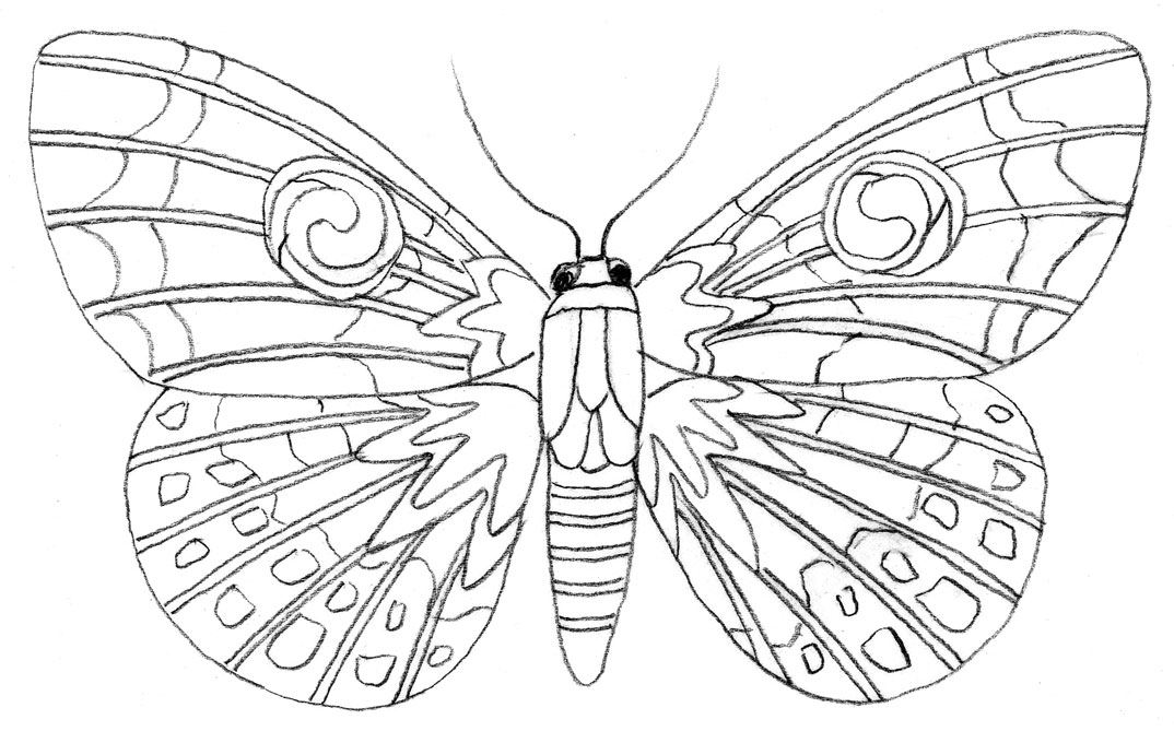 Colouring Tutorial How To Draw A Butterfly
